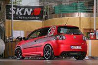 SKN-GT-11