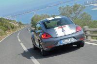 beetle-nachwuchs2