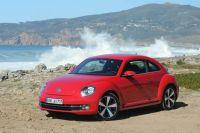beetle-nachwuchs3